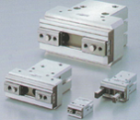 Air Gripper with Linear Guide
